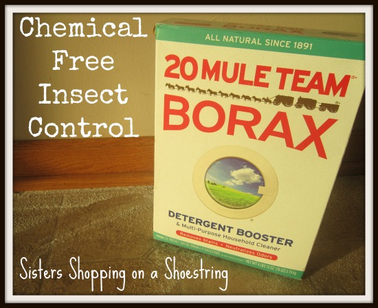 Chemical Free Insect Control