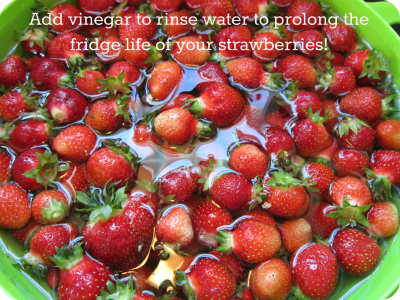 rinse berries with vinegar Sisters Shopping on a Shoestring