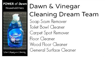 Vinegar Dawn Baking Soda Shower Cleaner Recipe | Sante Blog